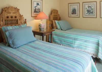 mountain-view-suite-two-beds